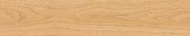 American Oak (2974)