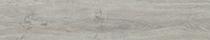 Ashen Oak (2818)