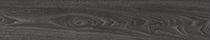 Black Elm (4035)