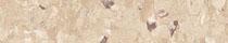Cinnamon (1850)