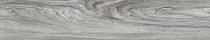 Grey Mountain Ash (3427)